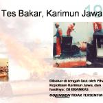 Tes Bakar Karimunjawa